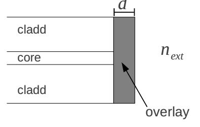 Figura 2: Sensore in fibra con overlay.