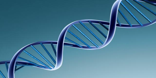 Il DNA è un acido nucleico che contiene tutte le informazioni genetiche relative a una determinata persona
