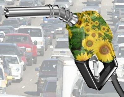Biodiesel, carburante alternativo