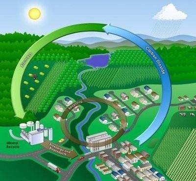 biomasse energie rinnovabili