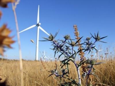 Energia eolica in Europa
