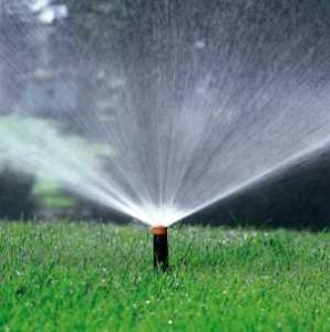 Irrighino quando arduino diventa un aiuto giardiniere for Impianto irrigazione automatico