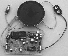 Lettore dast a batteria progetto open source