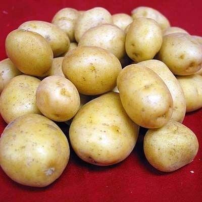 patate per fare energia